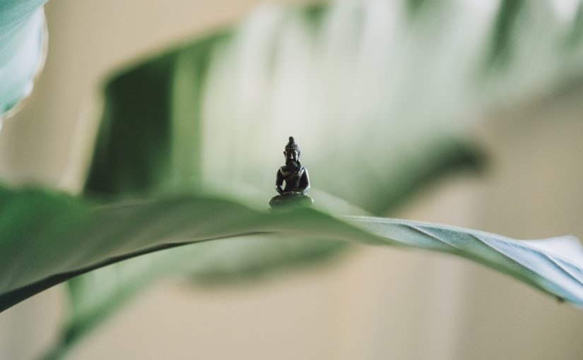 A Buddhist Psychology based on Theravada & Mahayana
